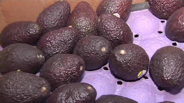 Global warming could cause avocado shortage