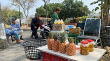 China says Taiwan pineapple ban not about politics as war of words escalates
