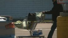 Shoppers, retailers ready for new plastic bag bylaw in Moncton, Dieppe, Riverview