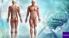 Top 5: Cinco datos curiosos sobre tu cuerpo
