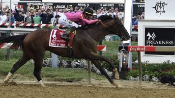 War of Will wins Preakness in clean finish