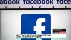 Facebook Had 'Incredible' Quarter Despite Boycott: Analyst