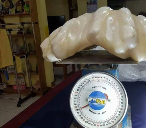75-pound pearl spent a decade stowed under someone's bed