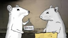 'Animals': A Quirky Cartoon With Lots of Star Voices