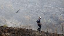 Incendio forestal en municipio del centro de Colombia arrasa 2.000 hectáreas