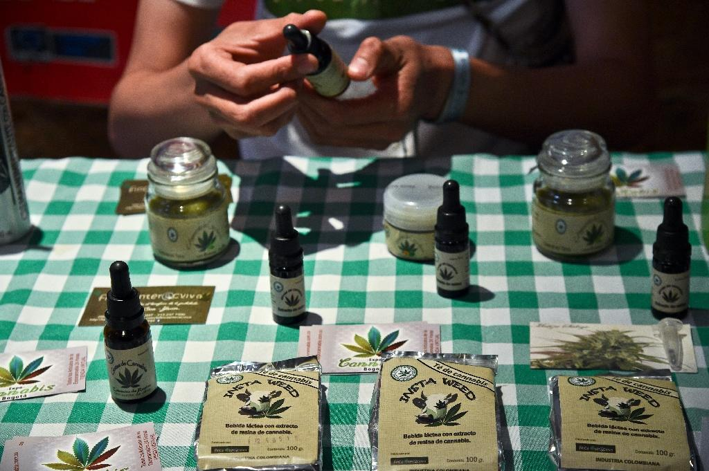 The marijuana-derived medicines will be available in Macedonia to patients battling health problems linked with cancer, multiple sclerosis and epilepsy (AFP Photo/Guillermo Legaria)