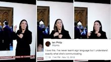 BBC Sign Language Interpreter Explains Brexit Most Accurately