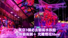 東京3個必去藝術水族館 金魚藝術展+ 光雕煙花Show