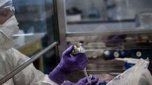 Coronavirus : ce qu'il faut savoir sur la molécule prometteuse testée à Lille