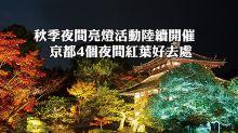 秋季夜間亮燈活動陸續開催  京都4個夜間紅葉好去處