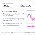 Idexx Labs, IBD Stock Of The Day, Nears Breakout On Bullish Pet Trends