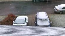 Thanksgiving snowfall seen all over Calgary neighbourhoods and surrounding areas