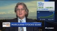 Pot stocks are soaring again with Tilray surging 50% in single day