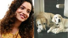 Ankita Lokhande Plays with Her 'Do Anmol Ratan', Watch Video