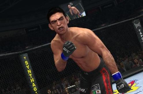 THQ introduces its own 'Online Pass' in UFC 2010