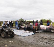 APNewsBreak: Alaska Natives believed whale hunt was legal