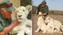 Man mauled to death by lions in front of wife