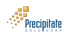 Precipitate Coordinates Sale of Everton's Restricted Shares to Strategic New Investor Group
