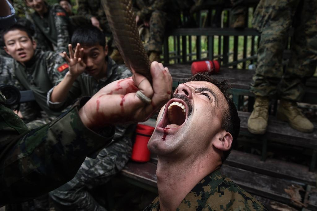 US and Thai troops took turns drinking blood from a severed cobra (AFP Photo/LILLIAN SUWANRUMPHA)