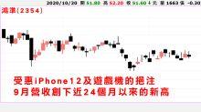 iPhone 12預購熱  帶旺鴻家軍?
