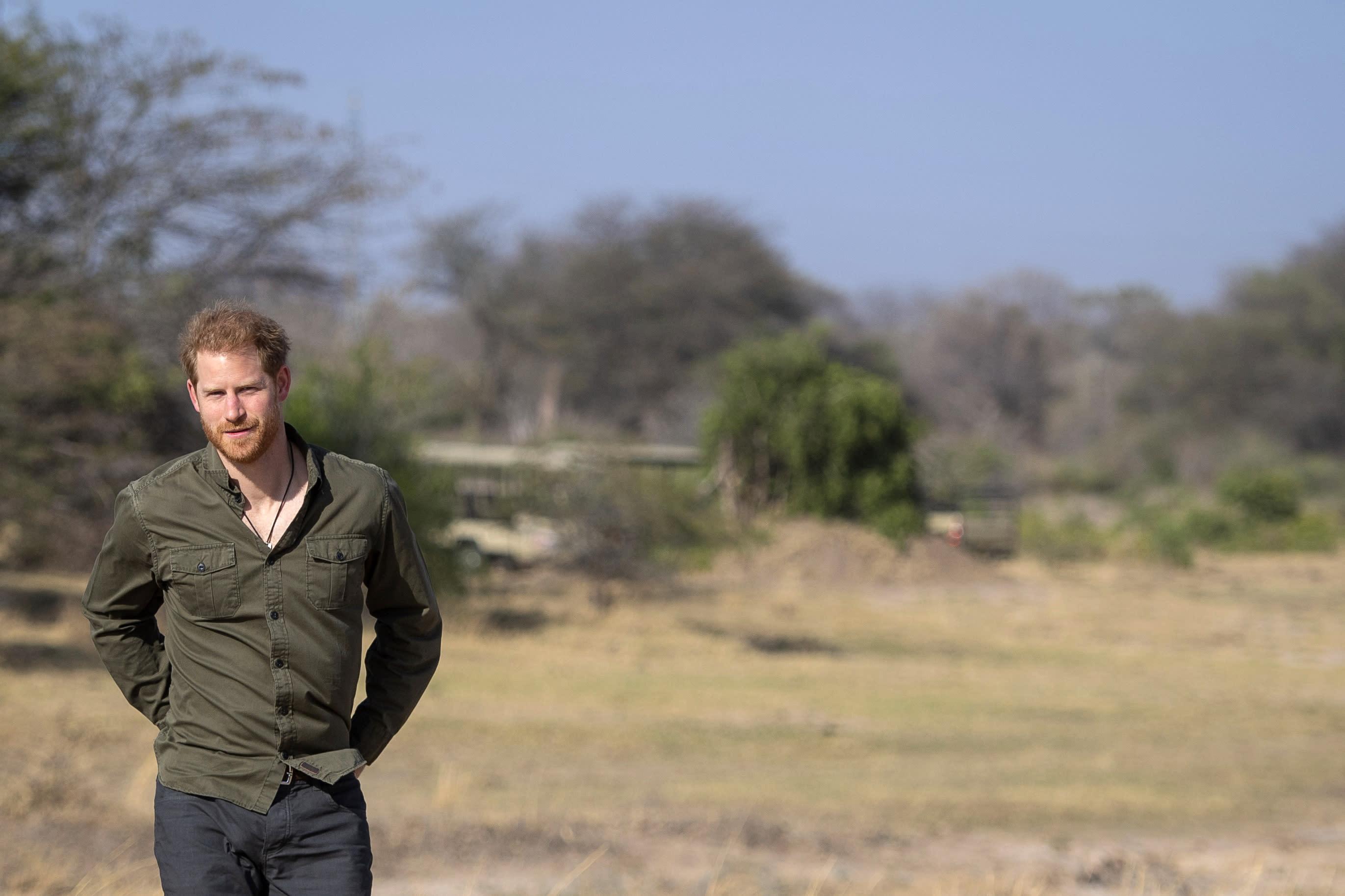 Prince Harry Recreates Princess Diana's Walk Through Minefield in Angola