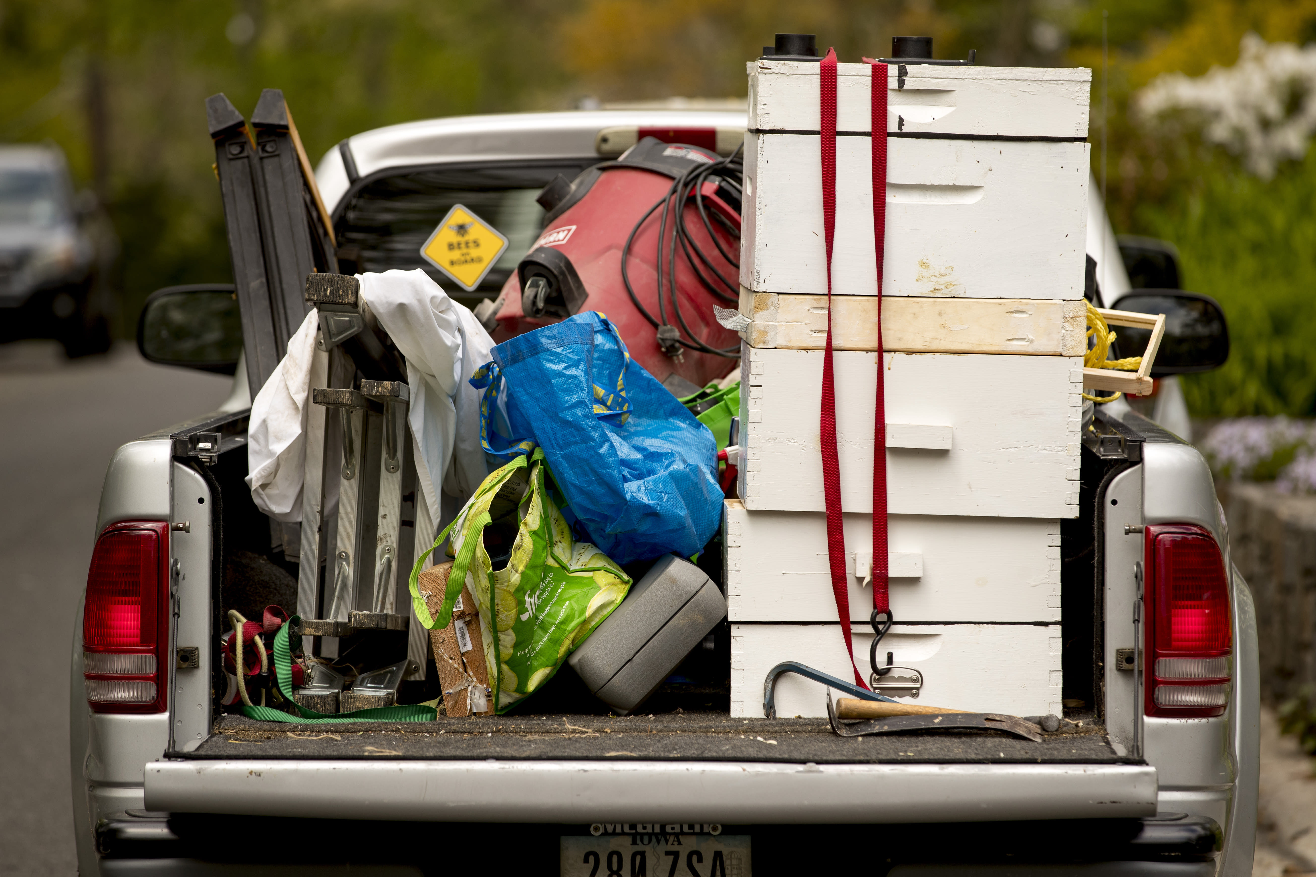 Various tools and bee boxes are visible in the truck of beekeepers Sean Kennedy and Erin Gleeson as they inspect a swarm of honey bees, Saturday, April 25, 2020, in Washington. The District of Columbia has declared beekeepers as essential workers during the coronavirus outbreak. If the swarm isn't collected by a beekeeper, the new hive can come to settle in residential backyards, attics, crawlspaces, or other potentially ruinous areas, creating a stinging, scary nuisance. (AP Photo/Andrew Harnik)
