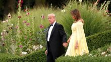 Trump says he will run for reelection, had Brexit chat with Queen Elizabeth