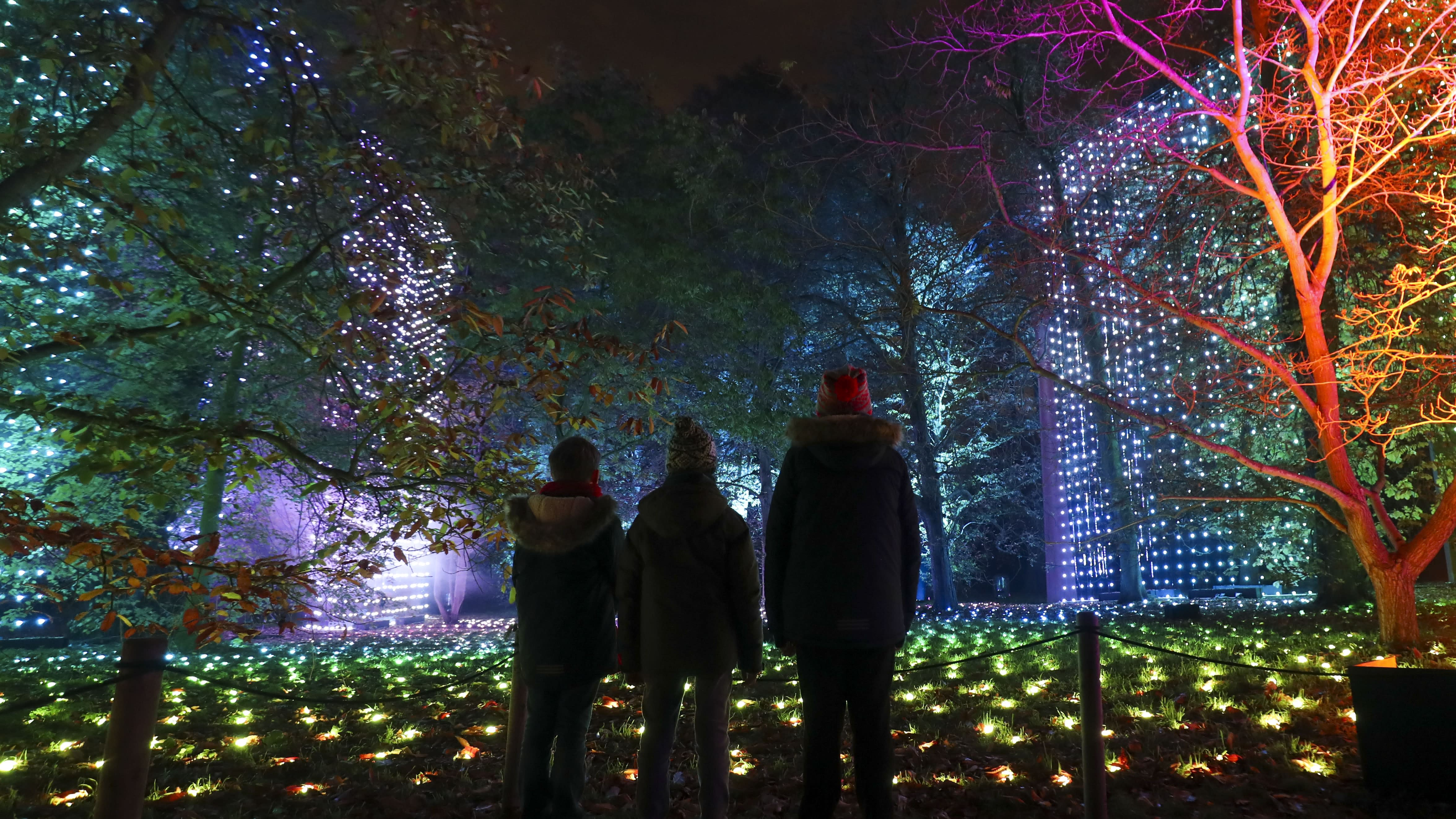In Pictures: Spectacular Christmas light show at Kew Gardens