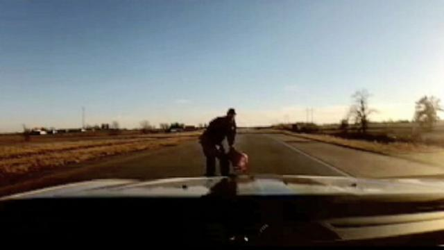 Police Officer Stops Traffic for Teddy Bear