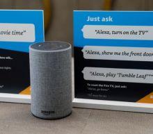 Top senator fears Big Tech at home as Alexa, Nest dominate