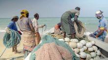 """""""Wem gehört das Meer?"""": Doku zeigt fatale Folgen des Ocean Grabbing"""
