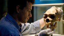 Les formes graves de Covid-19 liées à nos gènes issus de Néandertal?