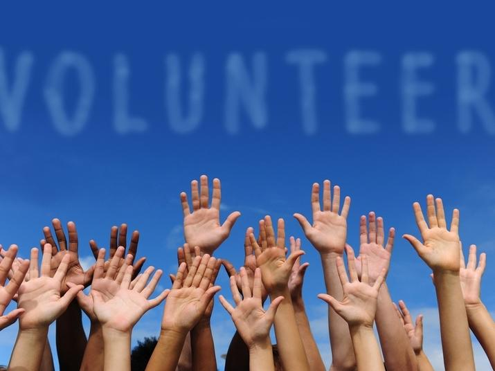 Here are some opportunities to volunteer in the Hudson Valley.