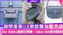 手袋2020|15款灰藍名牌手袋!Dior Bobby、Celine Belt回頭率超高