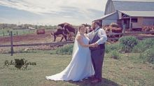 Ontario couple's wedding picture photobombed by frisky cows