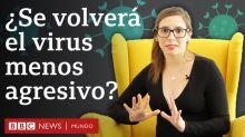 Por qué es una buena noticia que los virus más agresivos sean los menos contagiosos (y qué pasa con el coronavirus)