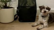 Dieser Rucksack ist praktisch, stylisch und nachhaltig