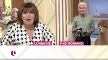 This Morning's Phillip Schofield spat on by alpaca