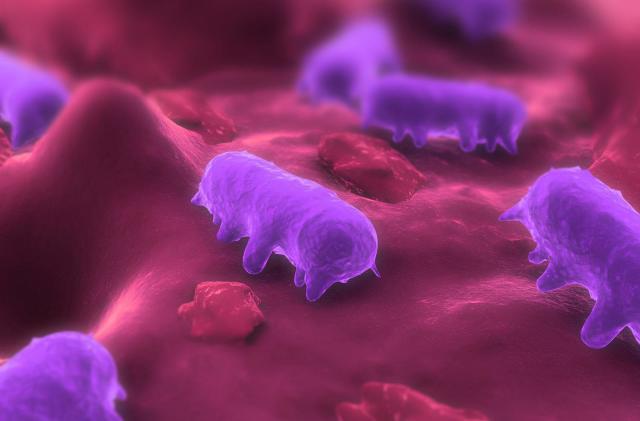 Scientists take a big step toward creating custom organisms