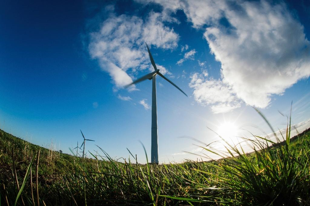 There is a bright future for wind and solar power as they are rapidly becoming cheaper than fossil fuel electricity plants, according to a new study. (AFP Photo/JONATHAN NACKSTRAND)