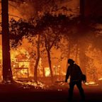 Dayslong wildfire ravages homes in Northern California