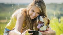 Now there's a Tinder for your dog