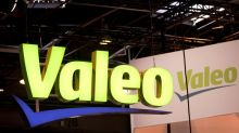 France, braced for activist raids, raises Valeo stake