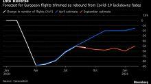 Flughäfen setzen auf schnelle Tests und Spürhunde gegen Corona