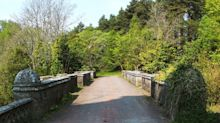 El misterio del puente escocés donde los perros se suicidan