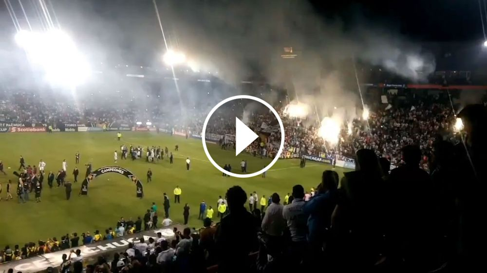 VIDEO: ¡Dale campeón! Los Tuzos festejan en el Hidalgo