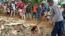 292 crocodilos são massacrados por multidão enfurecida na Indonésia