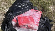 A snorkeler discovered 25 bricks of cocaine worth more than $1.5 million in water off the Florida Keys