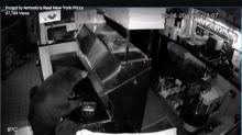3 Bears Break Into Colorado Restaurant, Find No Porridge