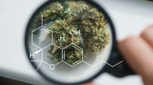 Can the First Marijuana-Derived Drug Become a Blockbuster?
